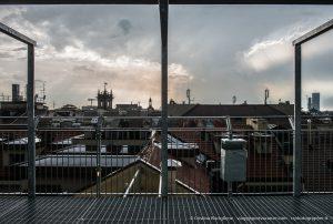 Vigna sui tetti